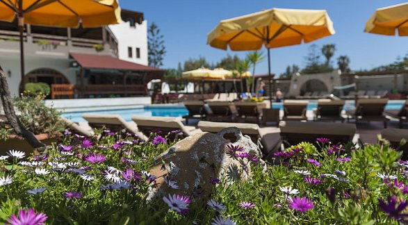 Hotel Gaia Garden, Griechenland, Kos, Lambi, Bild 1